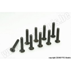Protech RC - Counters. Screw 4X25, 10 Pcs