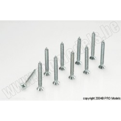 Protech RC - Count.Tp-Screw 2.9X25 10 Pcs