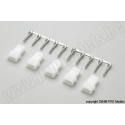 Protech RC - Amp Connector Female, 5 Pcs