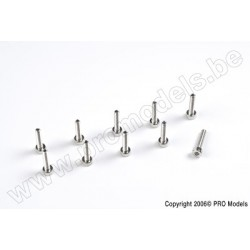Protech RC - Screw Set For Main Frame Set (M2 X 17) 10 Pcs Zoom 450 Ep