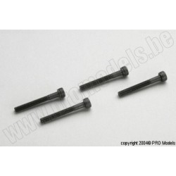 Protech RC - 3X25 Cap Screw