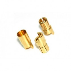 Rockamp Goldkontakt Stecker 5,5mm